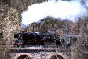 Dampflok auf Viadukt Odenwald