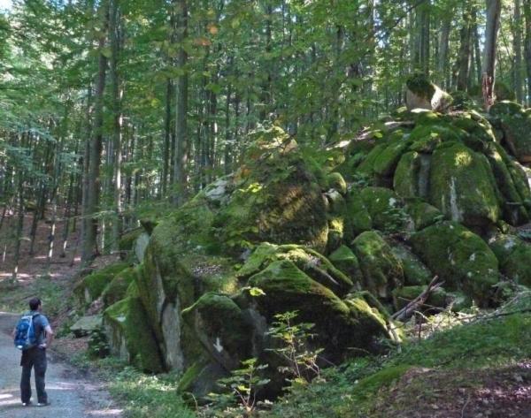 wandern im odenwald draisine